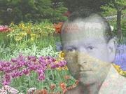 Terapia floral (Bach y Mediterráneo)