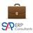 SAP ERP Consultants