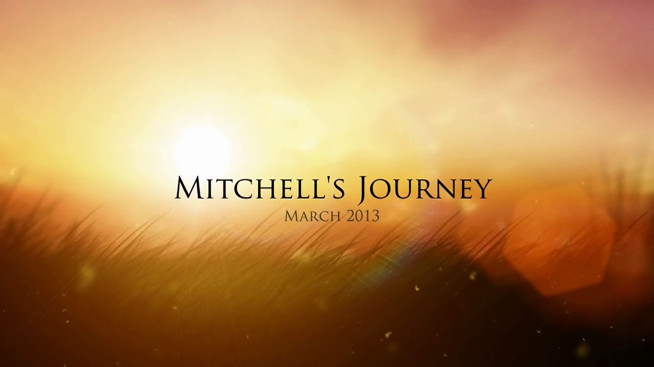 Mitchell's Journey - The Human Cost