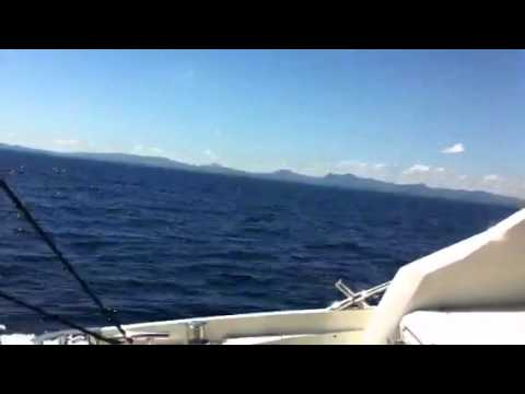 Miami Boat Rentals | Miami Yacht Charters | Miami Beach Attractions | Miami Watersports | Boats for Rent in Miami