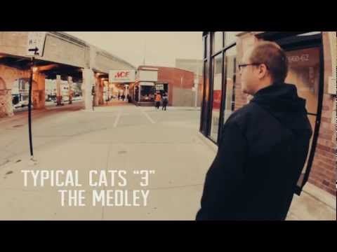 TYPICAL CATS - The Medley | TC3 Video Teaser