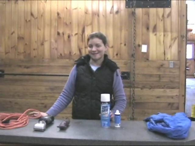 Horse Grooming: Tools for Horse Clipping