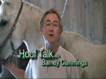HoofTalk7: Re-orienting the frog