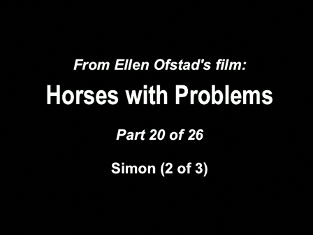 20-26 Horses with Problems - Simon 2-3