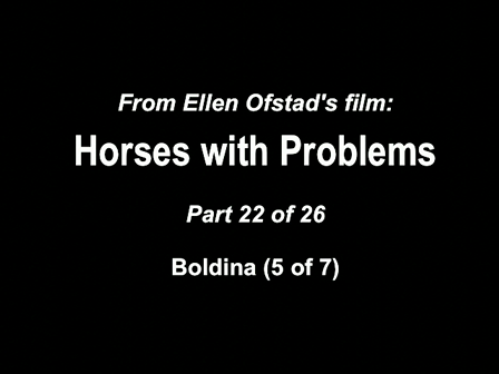 22-26 Horses with Problems - Boldina 5-7
