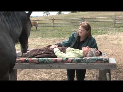 One With The Herd - Documentary preview  - www.equinisity.com