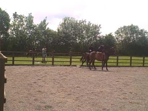 Novice Sidesaddle Equitation Part Two - Griffydam 13.06.10