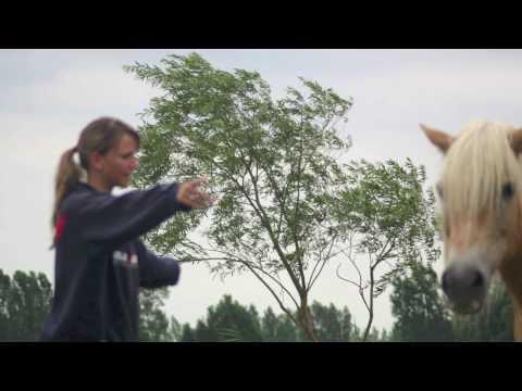 First Waterhole Rituals Clinic in Holland