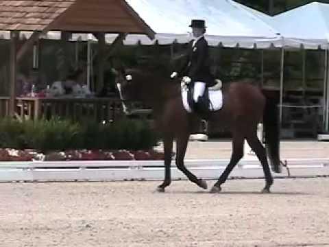 Catherine Chamberlain and Verdicci ~ U.S. National Championships 2010