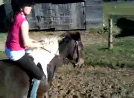 Jumping Daisy bareback