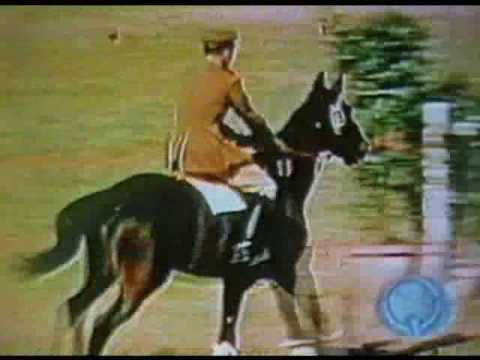 This is How Horse Jumping Looked in 1952