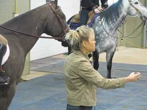 Lindsay Grice: Horse Training Steering Your Horse