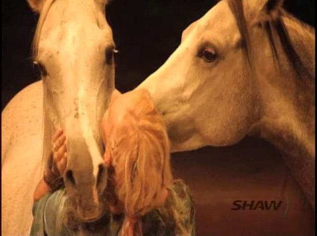 The Horse's Mouth TV Episode #6 with Cavalia
