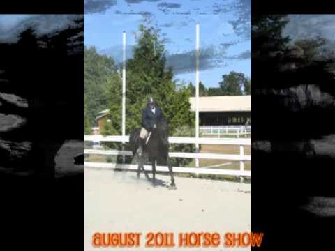 VIAHA August Open Show 2011