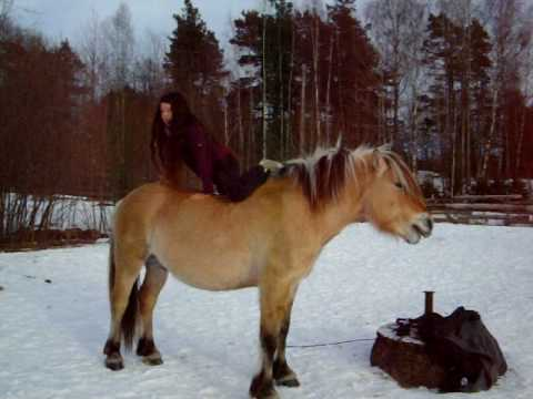 A New Way to Mount Your Horse
