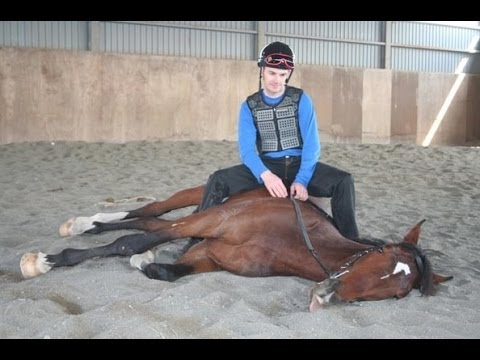 Fixing Problem Horses with the 'TAP' Method