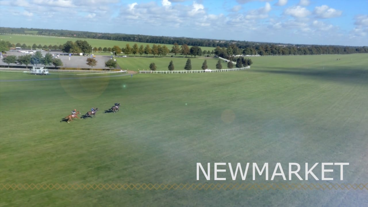 Look at the Jockey Club Training Facility in Newmarket, England - WOW!!