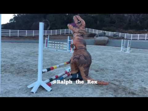 T-Rex Jumps a Horse!