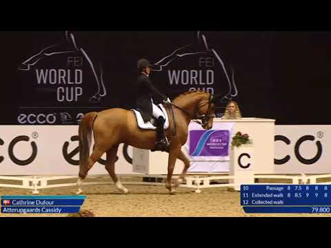 The 9 Collection! All of the 9 Scoring Movements at the World Cup Grand Prix Dressage in Denmark
