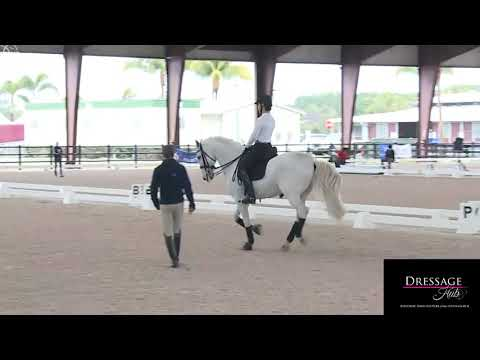 Robert Dover: How To Collect the Canter
