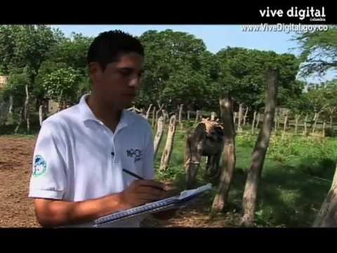 Ministerio de Agricultura en VIVE DIGITAL