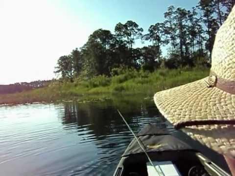 Flyfishing for Bream Ocala Forest, Florida Pt 2