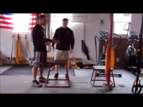 3 exercises to help you jump to the sky/Speed and Agility Institute