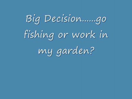Fishing in Southwest Florida