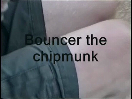 Bouncer (A Video Haiku)
