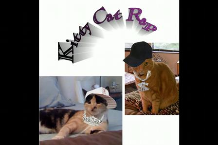 Kitty Cat Rap