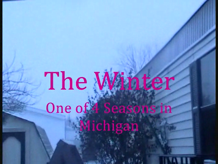 Winter-One of the 4 Seasons in Michigan