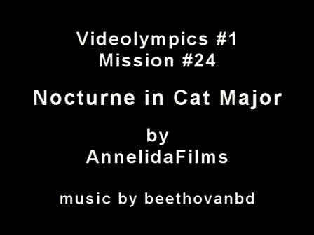 Videolympics 01.24: Nocturne in Cat Major