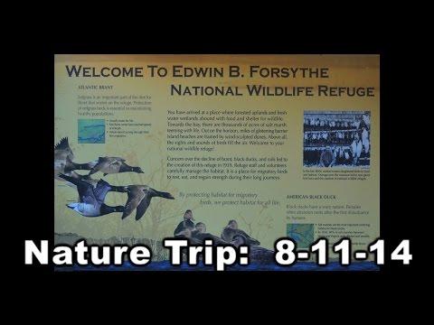 Nature Trip Photos 8-11-14