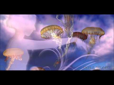Michael Hoppé: Lavender Shadows [ HD-BS ]