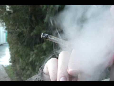 Robb Relo Ft Model - Smoke On (Drake November 28th)