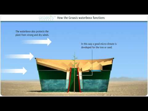 Reforestation Device Helps Tree Roots Grow Stronger & Deeper