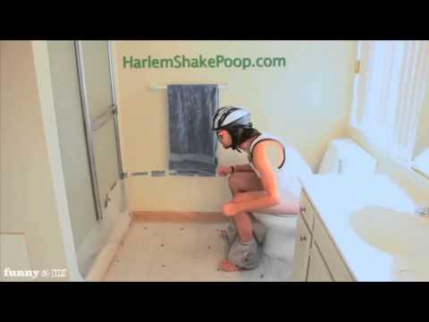 Harlem Shake Poop