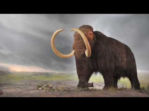 Ice Age: Mammoth Mystery Intro