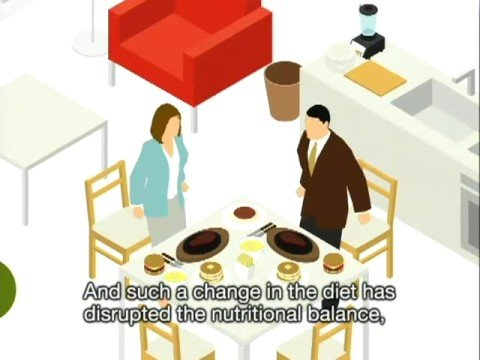 An Animated Rundown of Japanese Food Security