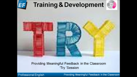 Providing Meaningful Feedback 'Try'Session Part 1