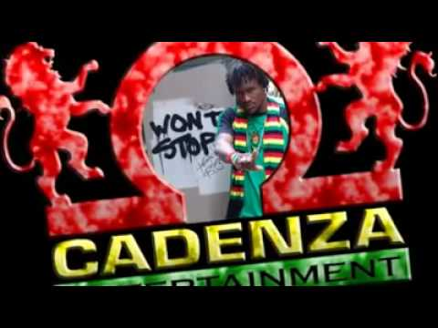CADENZA DILLON - SHE TURNS ON - SALT STORY RIDDIM - V.I.P INT [HQ]
