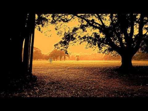 Chuck Eaton - Lights