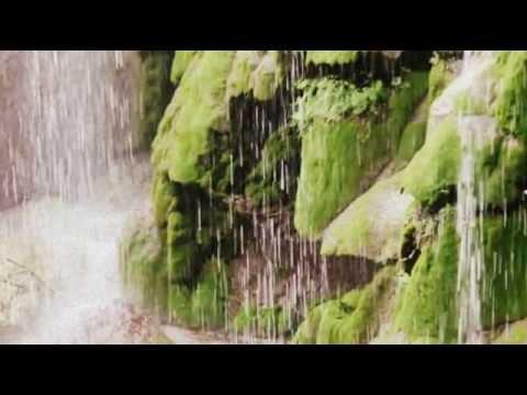Didier Euzet - After the Rain (684).