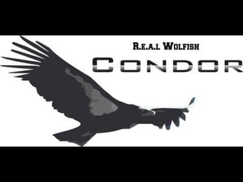 R.e.a.l Wolfish - Condor