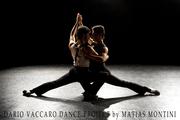 Dario Vaccaro Dance Project