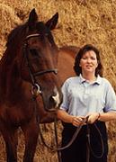 Clonshire Equestrian Centre