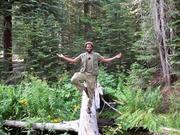 Jungle Guru