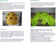 Fundacion Novo Agro