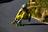 olivier bareaud