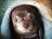 Linda Gardner (linda01720)